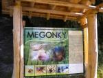 megonky_3